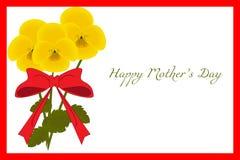 与红色框架,黄色蝴蝶花,传染媒介的花卉明信片 向量例证