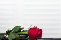 与红色玫瑰的老便条纸 免版税图库摄影