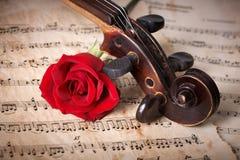 与红色玫瑰的老小提琴纸卷 免版税库存照片