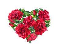 与红色玫瑰色花的花卉心脏 水彩为情人节 皇族释放例证