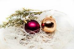 与红色球和杜松的木树装饰 免版税库存照片