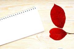 与红色白杨木的笔记薄在白色木板条离开 库存图片
