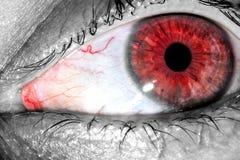 与红色紧的静脉的肉眼在蛋白质特写镜头纹理背景 免版税库存照片