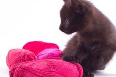 与红色线团的美丽的小的小猫 免版税库存照片