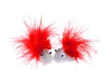 与红色羽毛的白色宠物岩石 库存图片