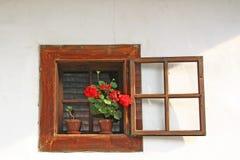 与红色花的农村窗口在罐 图库摄影