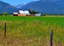与红色谷仓的美好的蒙大拿风景 免版税库存图片