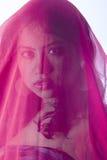 与红色面纱的美好的印地安女性模型 免版税图库摄影