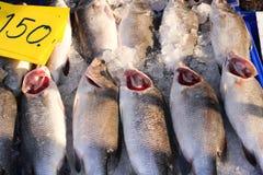 与红色鳃销售150泰铢的新鲜的白色攫夺者每公斤 库存照片