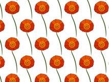 与红色鸦片的柔和的花卉背景 纺织品的样式 无缝 图库摄影