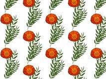 与红色鸦片的柔和的花卉背景 纺织品的样式 无缝 免版税库存照片