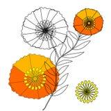与红色鸦片的柔和的花卉背景 纺织品的样式 免版税库存图片