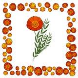 与红色鸦片的柔和的花卉背景 纺织品的样式 免版税库存照片
