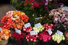 与红色,橙色,桃红色玫瑰的室外花市场,在维也纳,奥地利 免版税库存照片