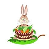 与红萝卜、圆白菜和甜菜篮子的一只兔子  免版税库存照片