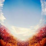 与红颜色树叶子和天空的美好的秋天风景背景 免版税库存照片