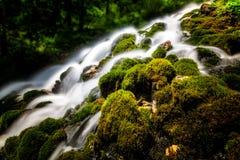 与纯净的水和绿色植被的山瀑布 免版税库存照片