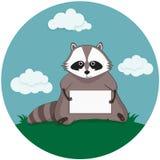 与纸板料的浣熊 免版税库存照片