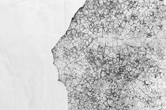 与纸空间的老肮脏的纹理文本的 免版税图库摄影