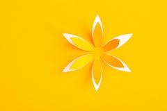 与纸花的贺卡 图库摄影