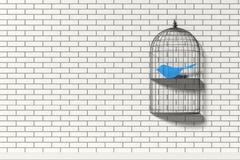 与纸蓝色鸟的鸟笼架子 免版税库存照片