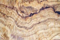 与纹理和细节的橄榄树木切片 免版税库存图片