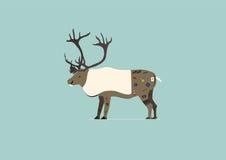 与纹身花刺的北美驯鹿 库存图片