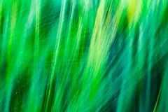 与线优势的被弄脏的绿色抽象背景  免版税库存图片