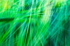 与线优势的被弄脏的绿色抽象背景  库存照片