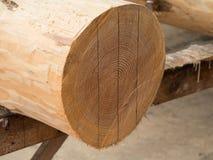 与线的被测量的木日志 库存图片