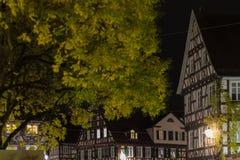 与细节的历史框架门面在11月晚上 免版税库存照片