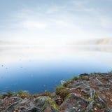 与结构树的自然横向在湖海岸根源 免版税库存图片