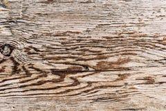 与结的老木纹理 免版税库存图片