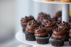 与结霜的巧克力杯形蛋糕 免版税库存照片