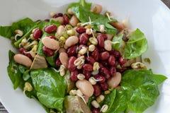 与维生素的豆沙拉 沙拉用菠菜,芝麻菜,鲕梨 免版税库存照片
