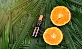 与维生素C萃取物,有新橙色切片的化妆吸管瓶容器的化妆用品skincare 免版税库存图片