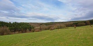 与绵延山侧面的阿尔登风景有杉木和其他树的 图库摄影