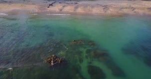 与绿松石水和珊瑚礁的海滩 影视素材