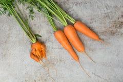与绿色上面的新鲜的有机红萝卜在老桌上 正确和反常概念 顶视图 免版税库存图片