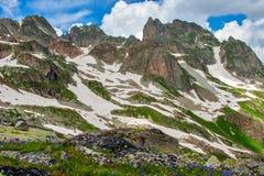 与绿色倾斜、花和雪的美好的山风景 免版税库存图片
