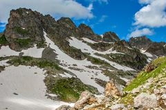 与绿色倾斜、花和雪的美好的山风景 免版税库存照片