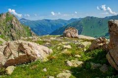 与绿色倾斜和花的美好的山风景 免版税库存照片