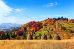 与绿色公平的树、桔黄色森林、高山和蓝天的美好的秋天风景 库存图片