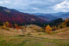 与绿色公平的树、桔黄色森林、高山和蓝天的美好的秋天风景 图库摄影