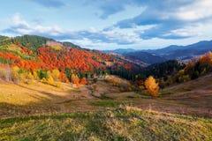 与绿色公平的树的美好的秋天风景,老小屋 库存照片