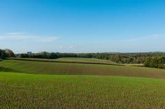 与绿色发芽植物和选择聚焦的被耕种的土壤 免版税库存图片