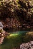 与绿色口气的河沿和壮观的水在Akame 库存照片