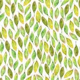 与绿色叶子和分支的另外类型的水彩手拉的无缝的样式 免版税库存图片