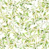 与绿色叶子和分支的另外类型的水彩手拉的无缝的样式 库存图片