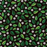 与绿色叶子和白花的五颜六色的样式 免版税图库摄影